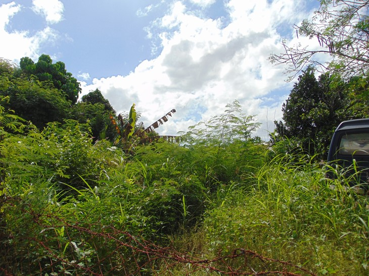 residential-lot-located-in-banilad-area-cebu-city-431-square-meters